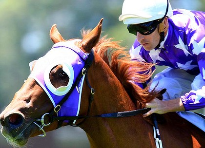 Using Blinkers To Make Horse Racing Selections