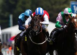 Major UK Horse Race Meetings 2014