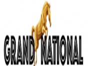 The 2015 Grand National
